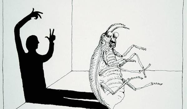 kafka metamorphosis ant